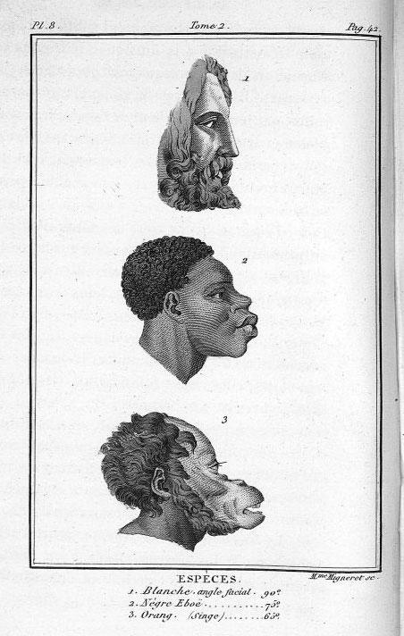 """Ilustração no livro """"História natural do gênero humano"""" de J.J.Virey - ed. 1824"""